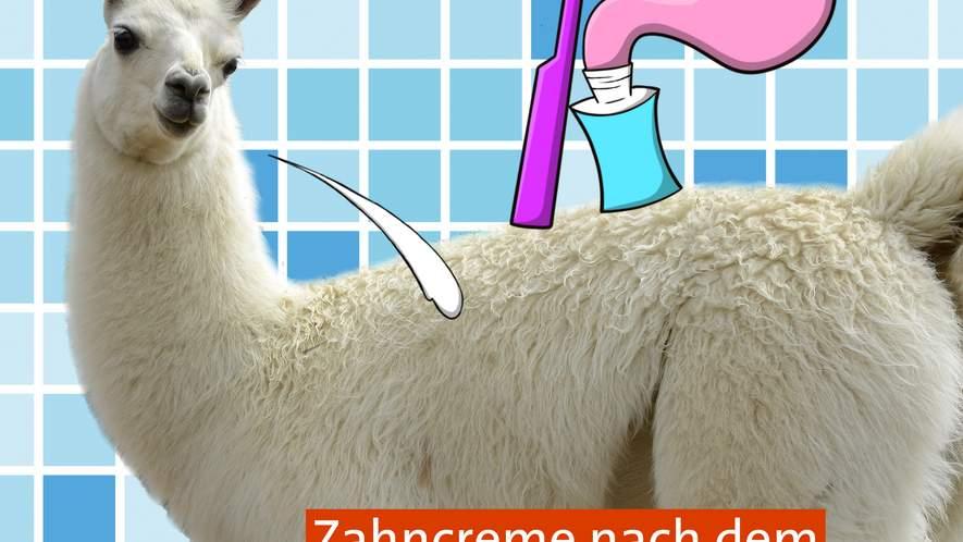 Tipp #2: Zähneputzen ist mehr als nur Reinigung!